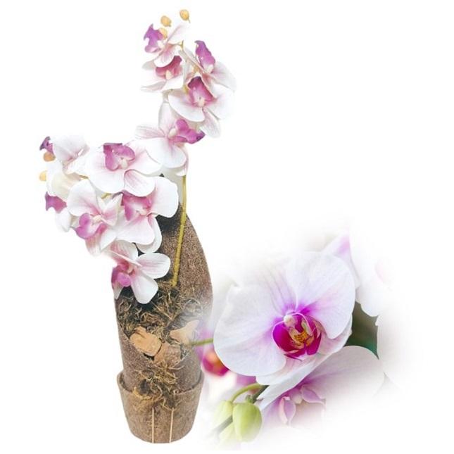 Arranjo de Orquídea Phalaenopsis Branca Artificial