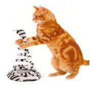 Brinquedo Joao Bobo Para Gatos - Zebra - Chalesco