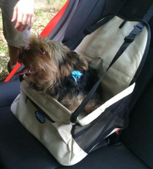 Cadeirinha/Assento de carro Car Seat  - Bege