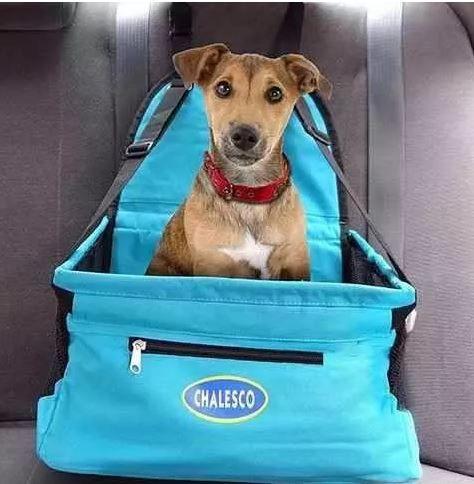 Cadeirinha/Assento de carro Car Seat - Azul