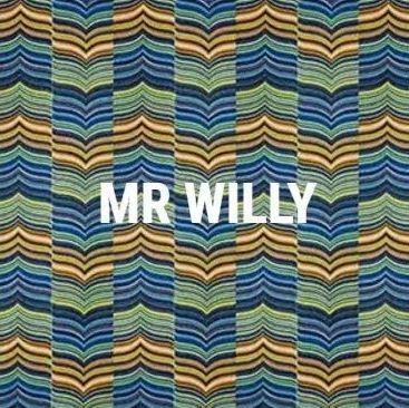 Coleira e Guia Don Dog - Mr. Willy
