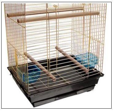 Gaiola para Papagaio e Calopsita Dourada - American Pets