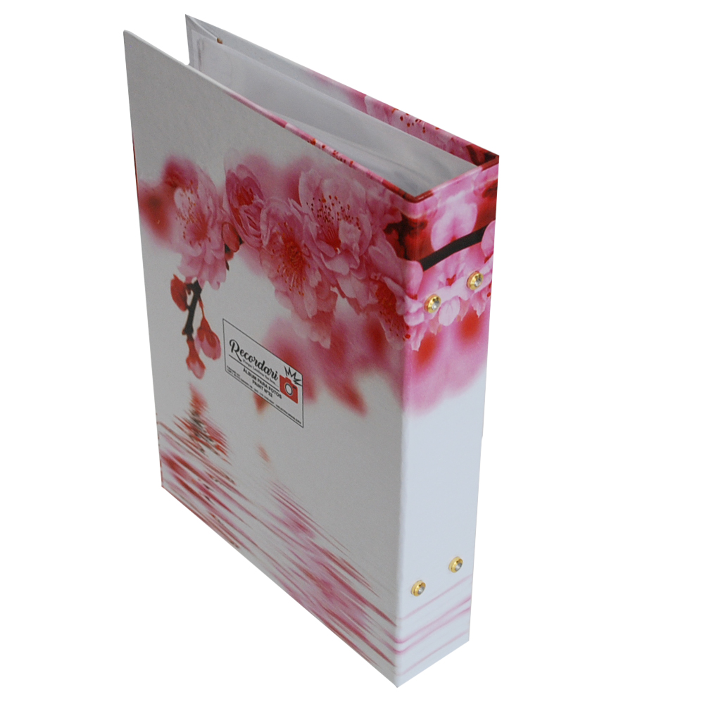 Álbum 240 Fotos 10x15 Paint C/Memo Rec 100/32