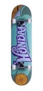 Skate Street Completo Hondar Willy 8.0
