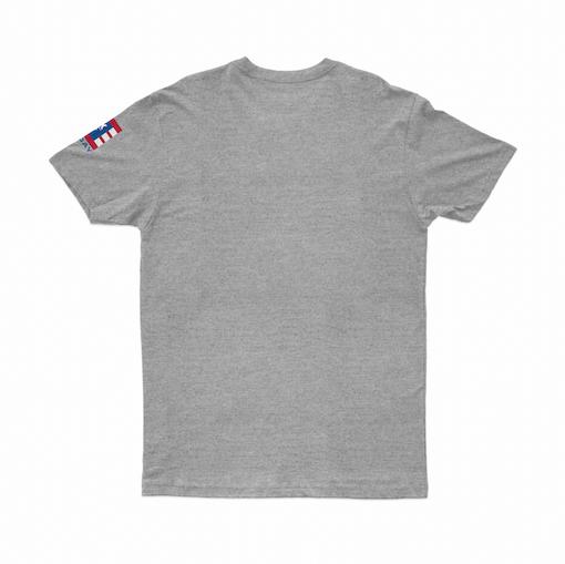 Camiseta DGK The Plug Mescla
