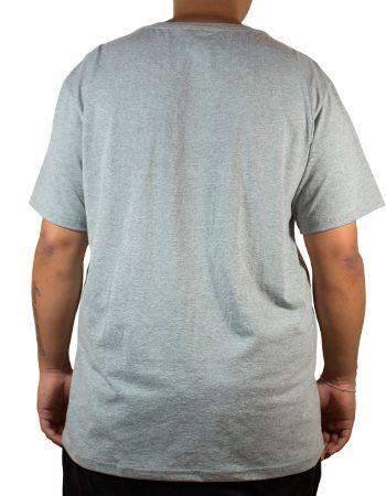 Camiseta Thrasher Skate And Destroy Cinza