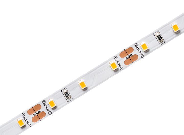 Fita LED Profissional 5W/M 2700K IP20 12V 400lm-5 Metros