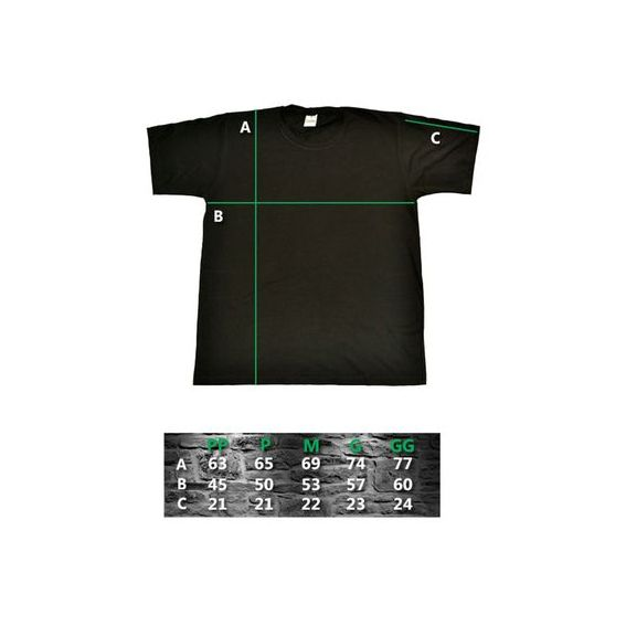 Camiseta Bazinga - Raglan  - HShop
