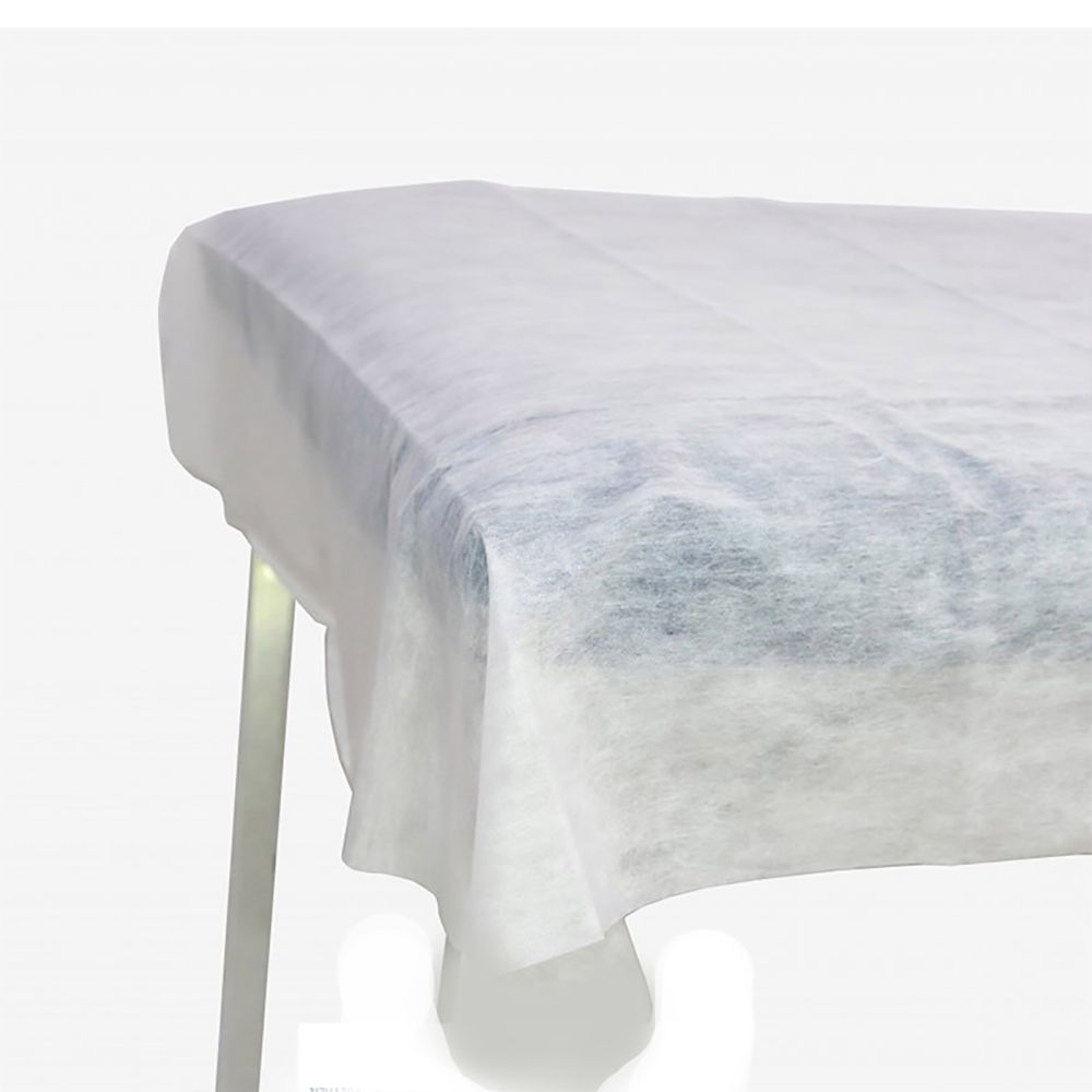 Lençol Descartável TNT Branco sem Elástico 2,00x0,90cm 10un Ana Dona