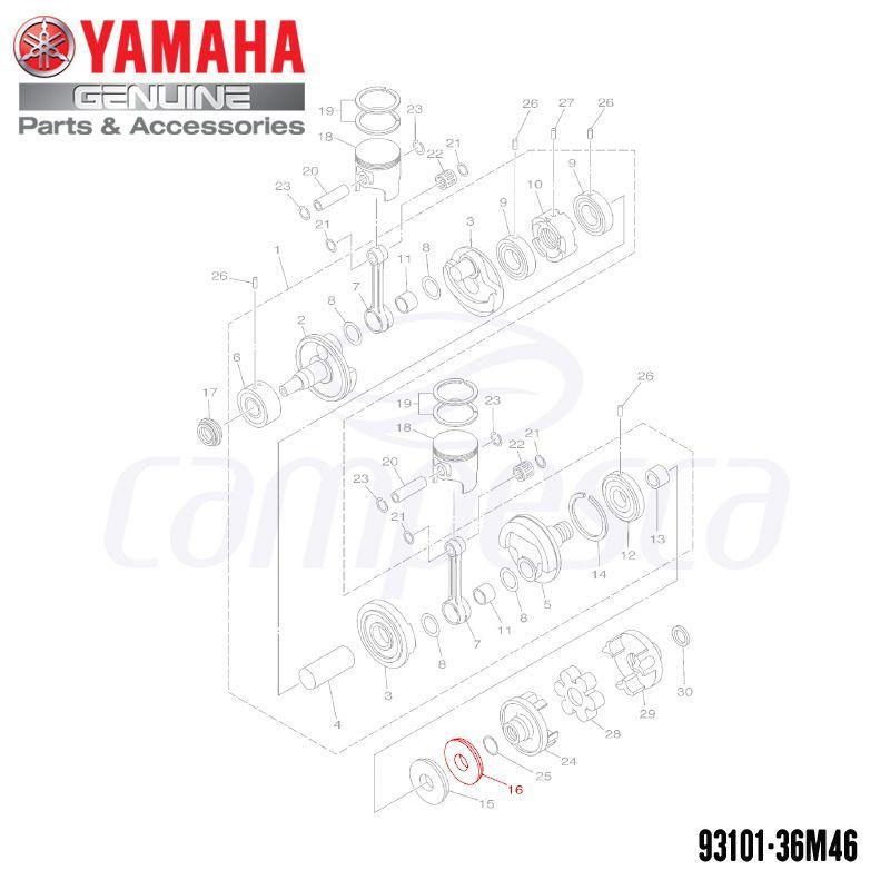 Retentor de Óleo (Wave Runner) - Yamaha (93101-36M46)