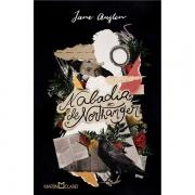 A ABADIA DE NORTHANGER - JANE AUSTEN