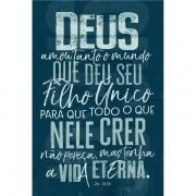 BÍBLIA NVT JOÃO 3.16 AZUL