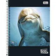 Caderno Espiral Capa Dura Universitário 10 Matérias Eco - 200 Folhas