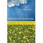 Providência Divina Considerai Como Crescem Os Lírios - Mons. Jonas Abib