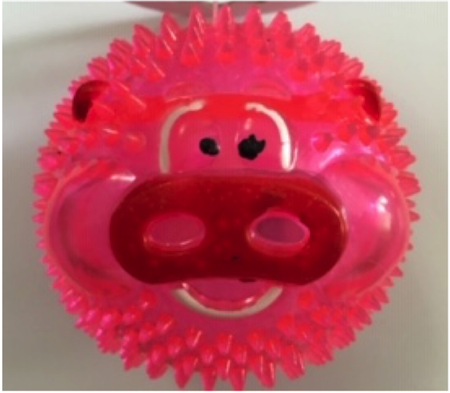 Brinquedo Bola Led Animals com Apito Sonoro para Cães