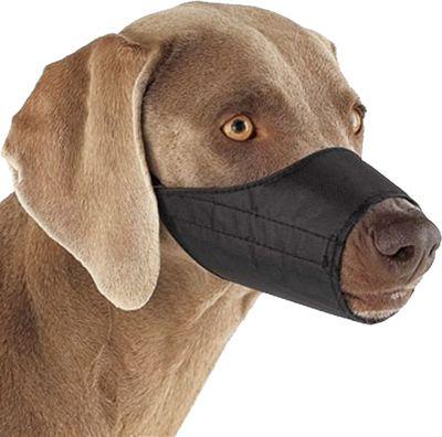Focinheira Nylon para Cães - Bom Amigo