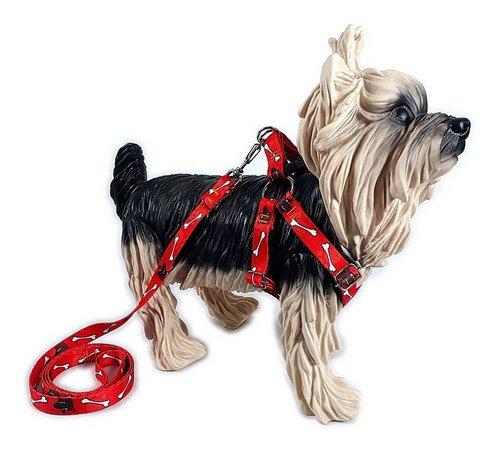 Guia Peitoral Estampada para Cães M