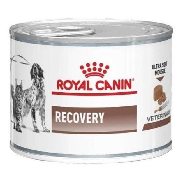 Recovery Royal Canin Veterinary Ração Lata Cães e Gatos 195 g