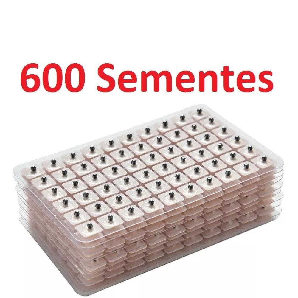 600 Sementes Vaccaria Auriculoterapia Acupuntura Auricular