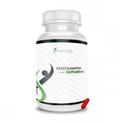Faseolamina 500mg - ITAPHARMA