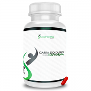 GARRA DO DIABO 500MG – ITAPHARMA