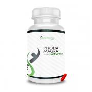Pholia Magra 500MG - ITAPHARMA
