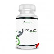 PSYLLIUM 500MG - ITAPHARMA