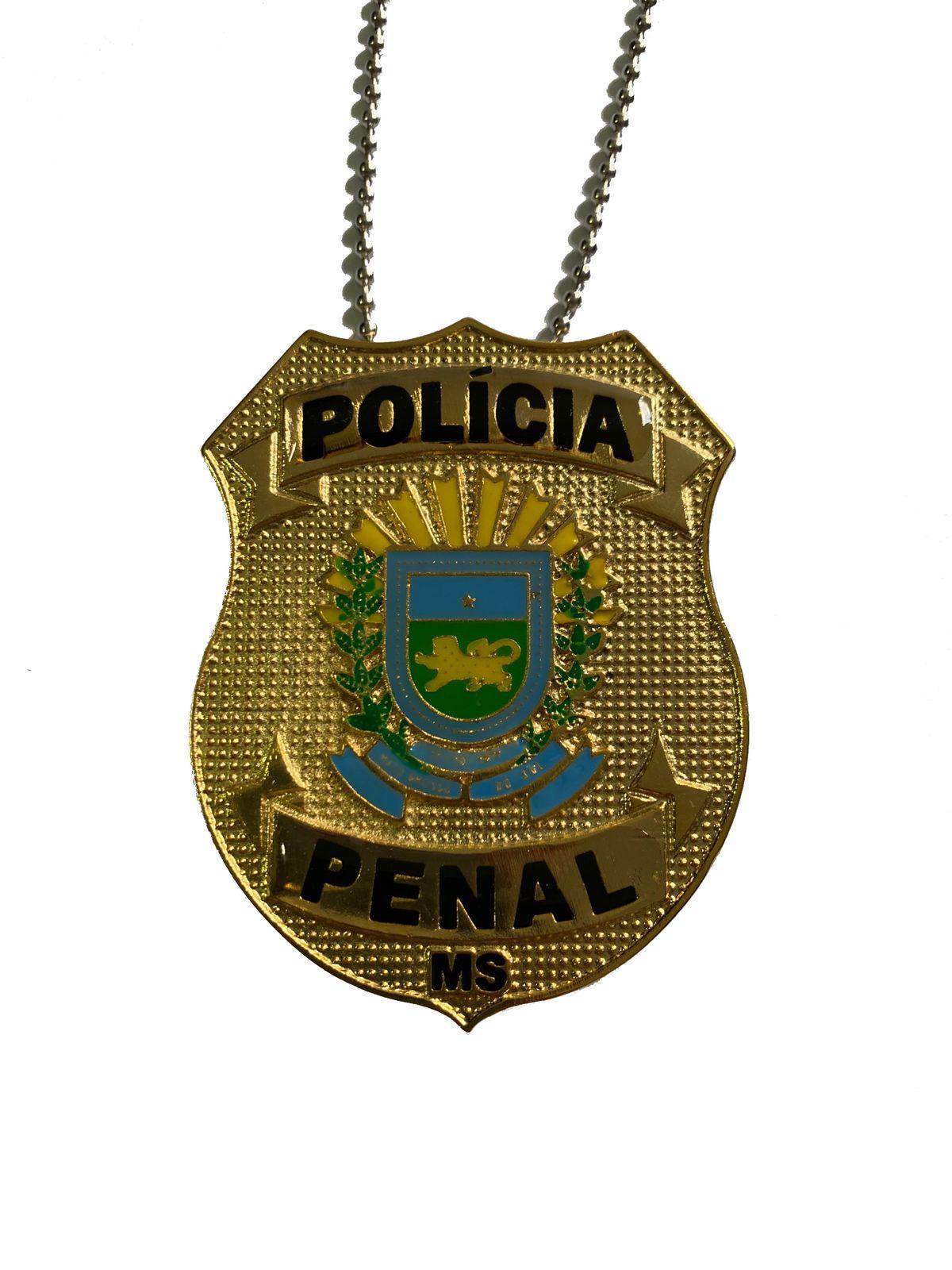POLÍCIA PENAL MATO GROSSO DO SUL - PPMS