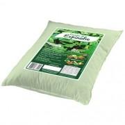 Farinha de Espinafre 500g - Módulo Verde
