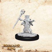 Gnome Male  Wizard A