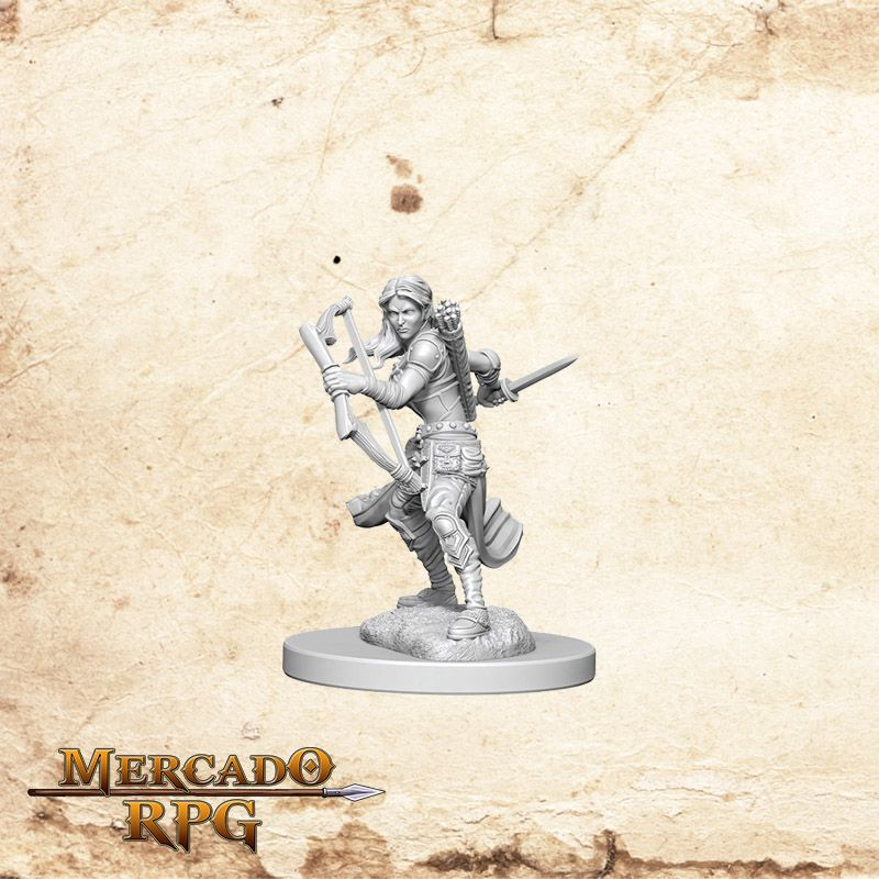 Air Genasi Female Rogue A - Miniatura RPG  - Mercado RPG