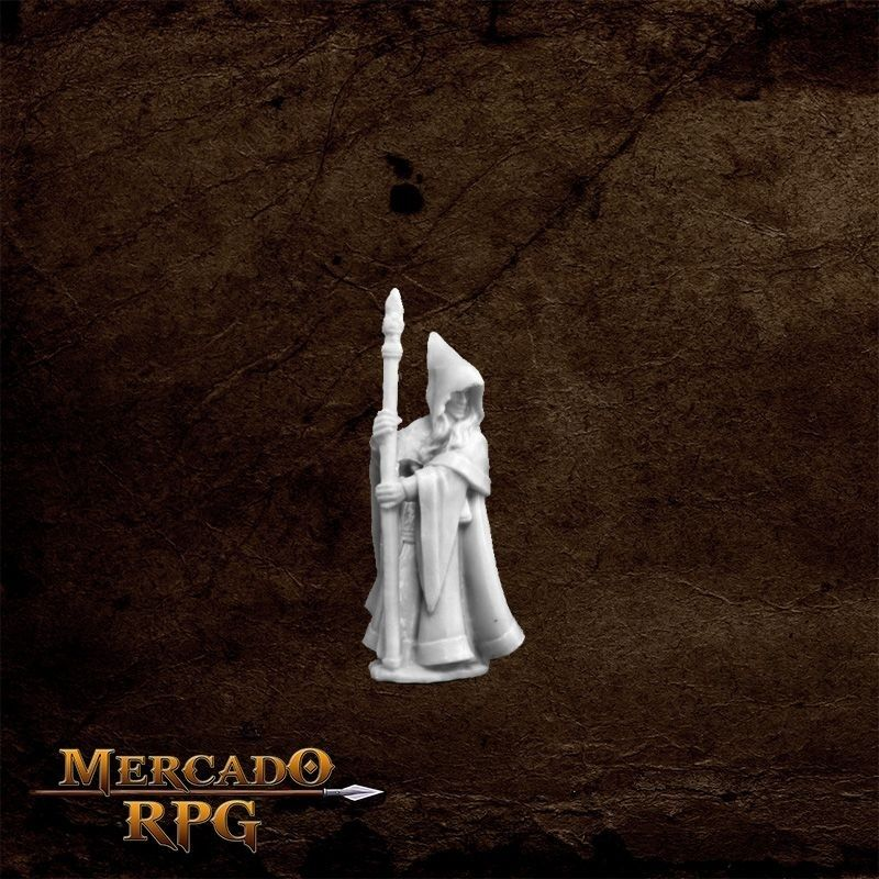 Anirion, Wood Elf Wizard  - Miniatura RPG  - Mercado RPG