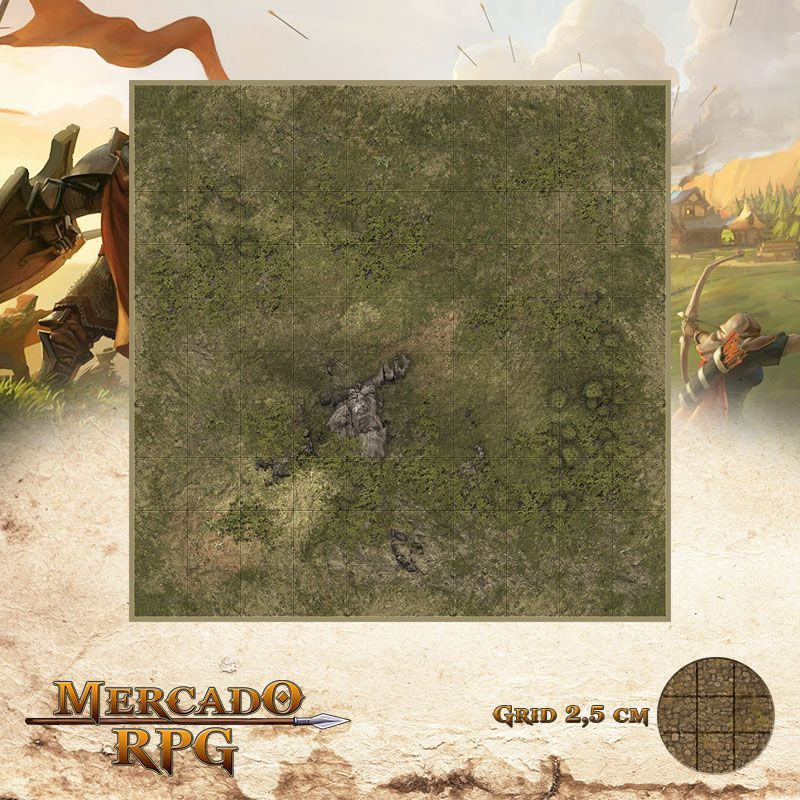 Area Selvagem C 25x25 - RPG Battle Grid D&D  - Mercado RPG