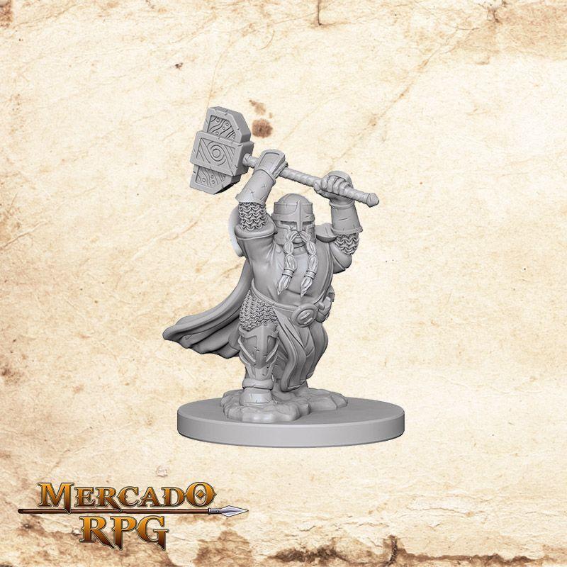 Dwarf Male Paladin B