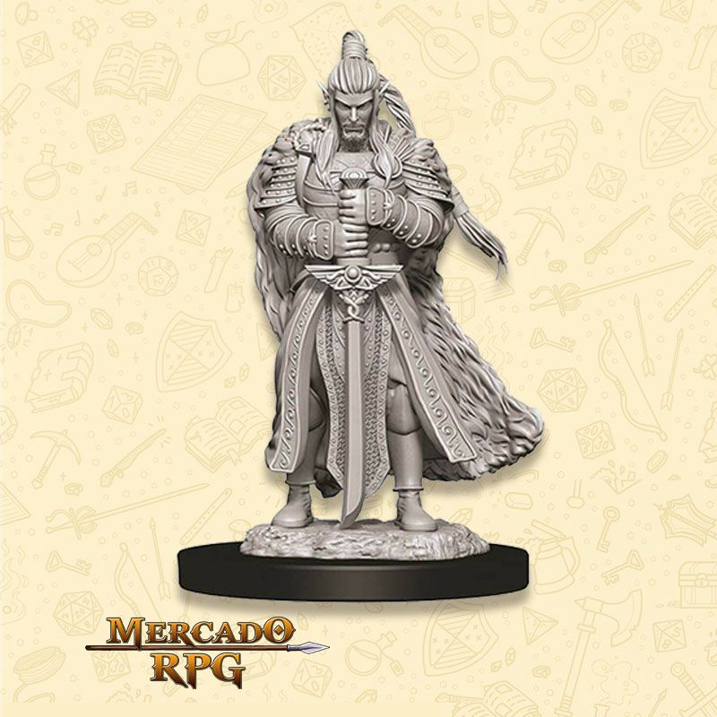 Elf Male Paladin C - Miniatura RPG  - Mercado RPG