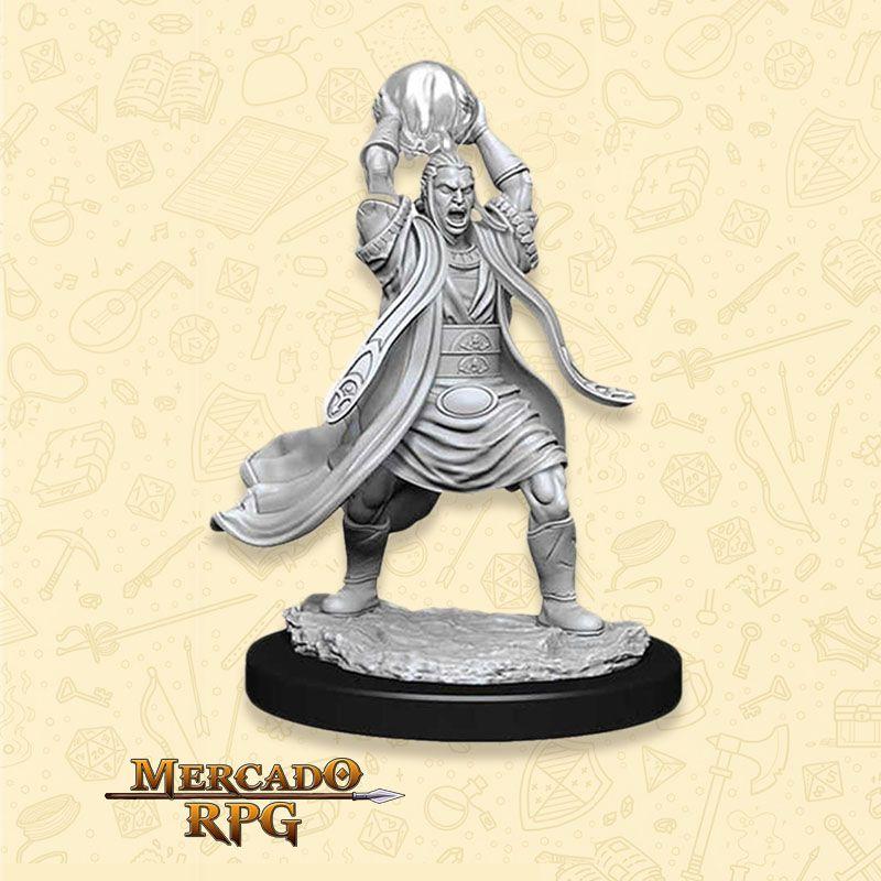 Elf Male Sorcerer C - Miniatura RPG D&D Nolzur?s Marvelous