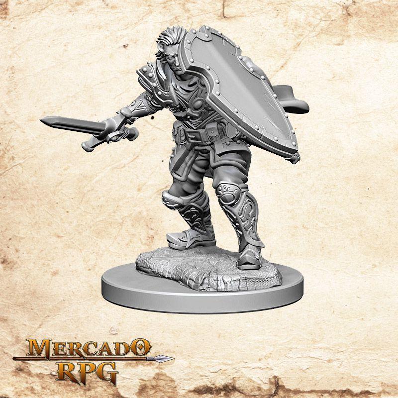 Human Male Paladin B  - Mercado RPG