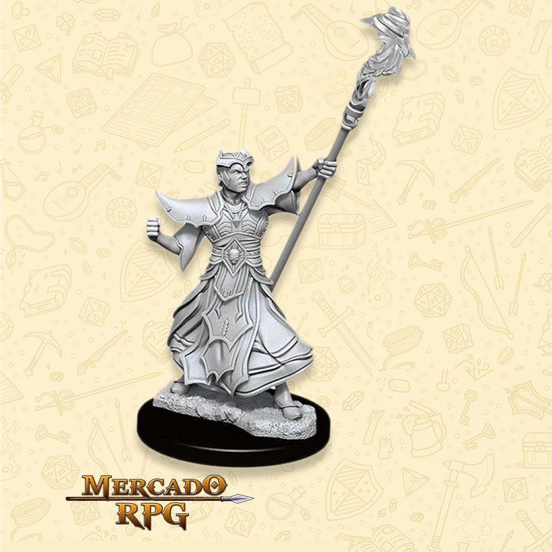 Human Male Sorcerer C - Miniatura RPG