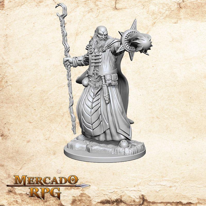 Human Male Wizard D - Miniatura RPG  - Mercado RPG