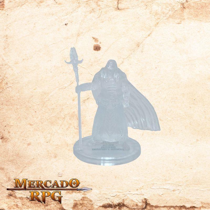 Invisible Human Wizard  - Mercado RPG
