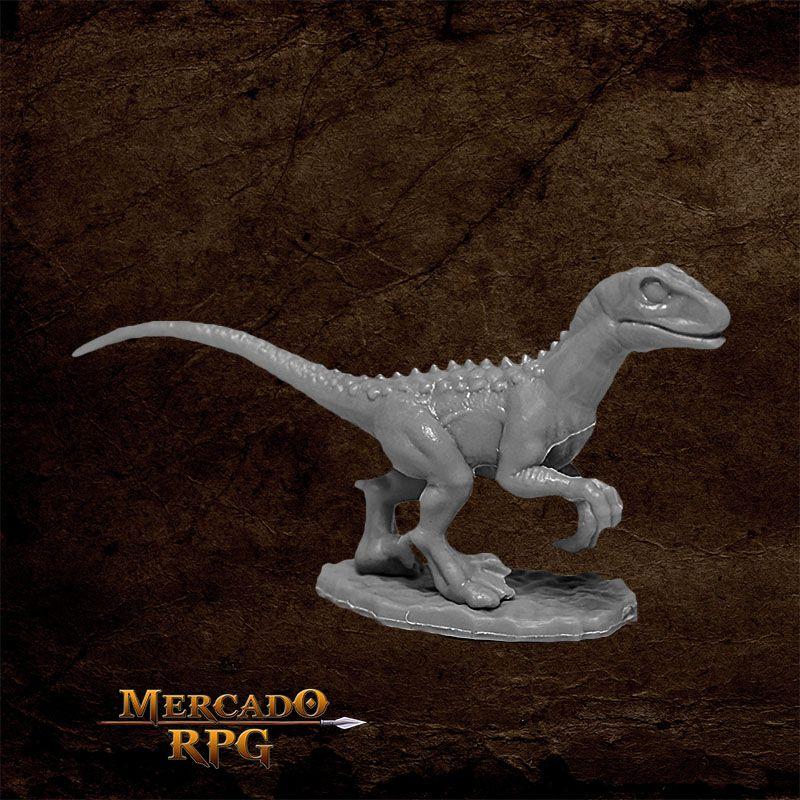 Raptor Hunting D - Miniatura RPG