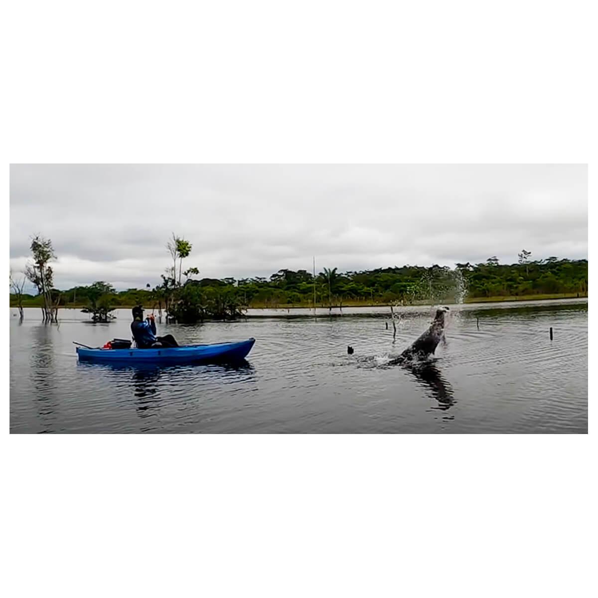 CAIAQUE SHARK LONTRAS COM REMO E ASSENTE ELEVADO