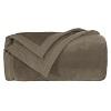 Castor Blanket 600