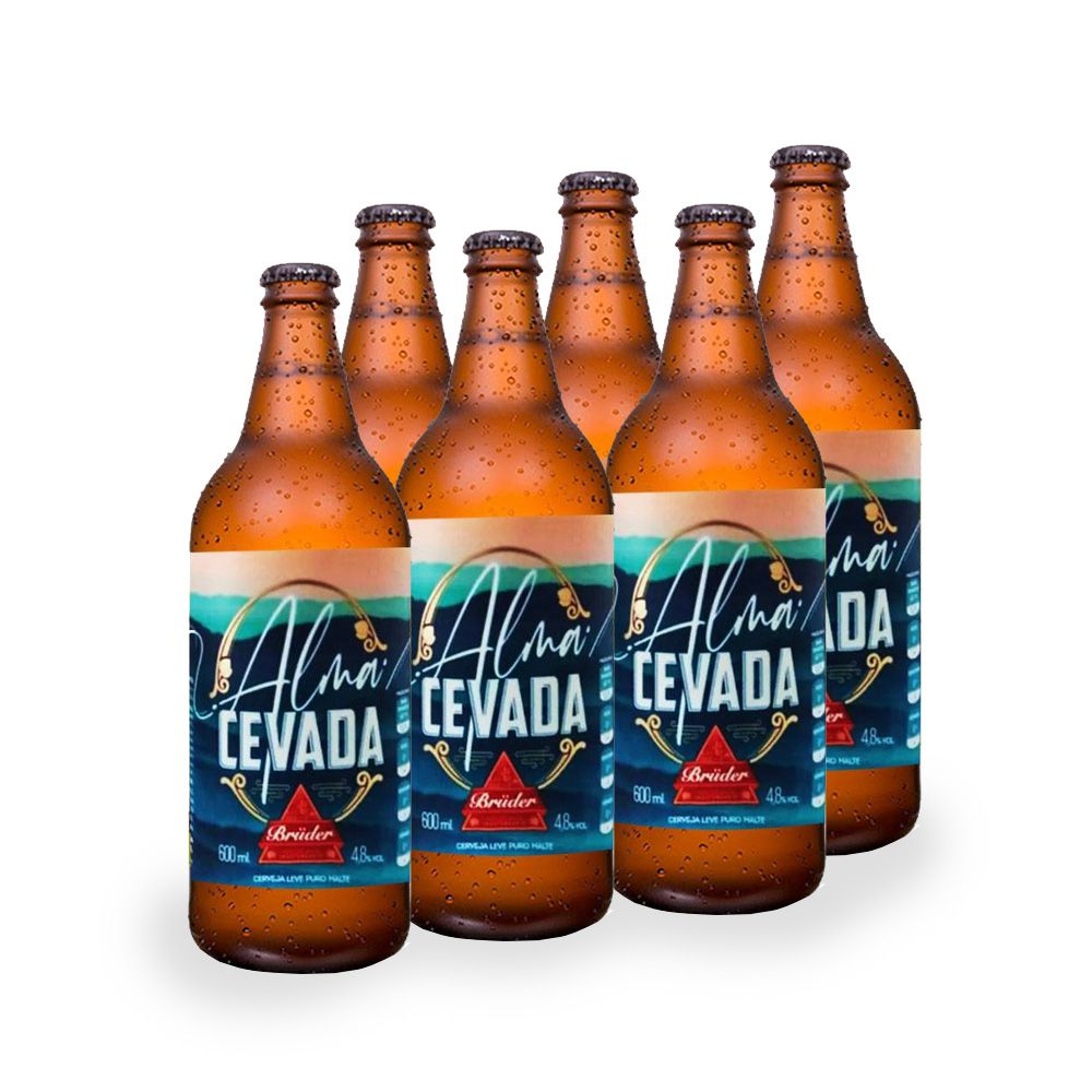 Kit Cerveja Alma Cevada Bruder 600 ml (6 unidades)  - Tudo Low Carb