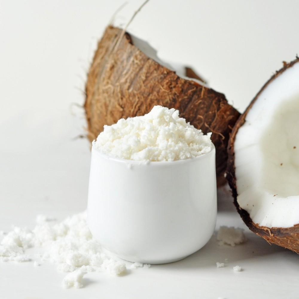 Leite de Coco em Pó 100% Puro 100g  - Tudo Low Carb