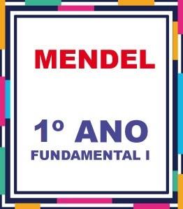 LISTA COMPLETA AGOSTINIANO MENDEL 1º ANO FUNDAMENTAL (COM DESCTO)