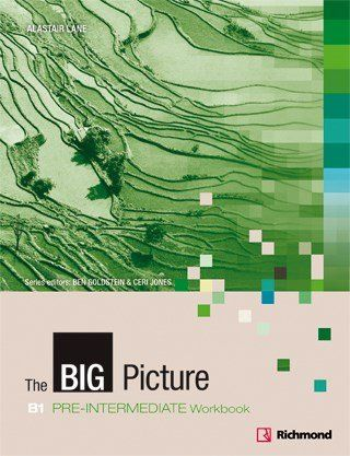 The Big Picture Pre Intermediate - Workbook