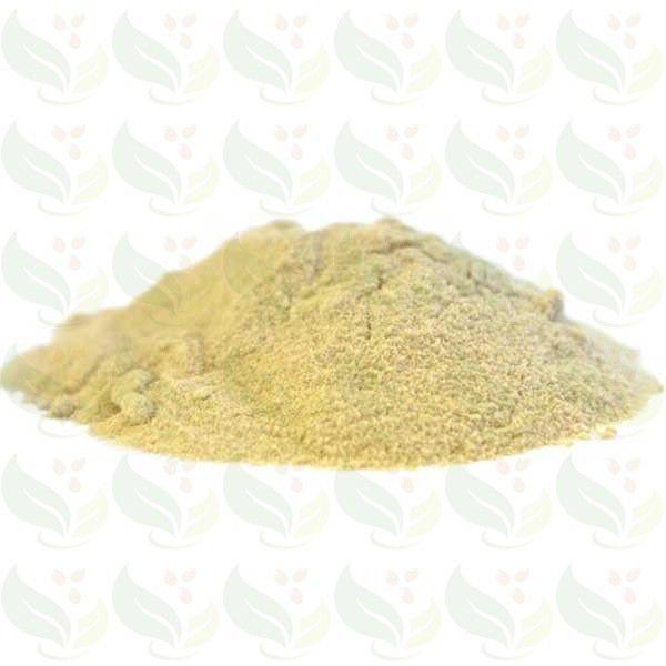 Proteína Isolada de Soja - 100g
