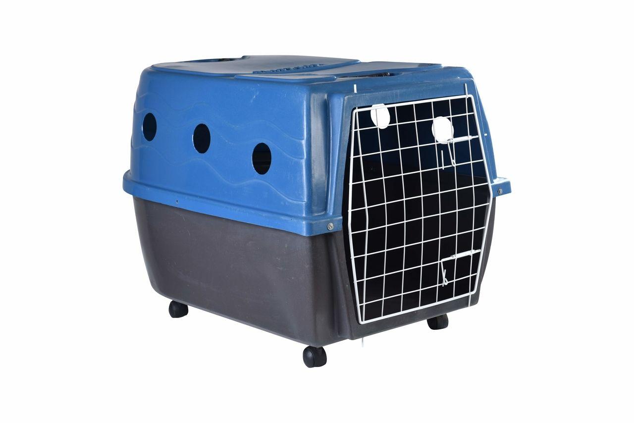 Transporte Pet Plástico nº 04 Azul