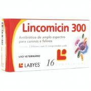 Antibiótico Lincomicin 300mg